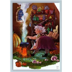 WITCH preparing a potion Mistress of House by Luki New Unposted Postcard