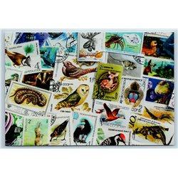 WILD ANIMAL STAMPS Postcard Eagle Owl Deer Snake Dinosaur New Unposted Postcard