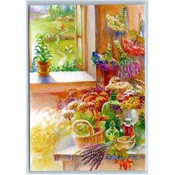 SUMMER HARVEST Flowers Herbage Homemade Window New Unposted Postcard