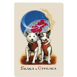 BELKA and STRELKA Russian SPACE DOG Cosmos Repro Russian Unposted Postcard